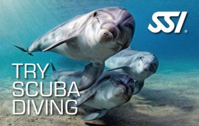 Try Scuba Diving, Schnuppertauchen