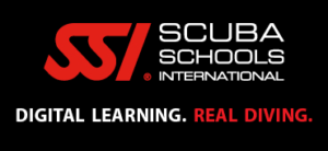 SSI digital learning