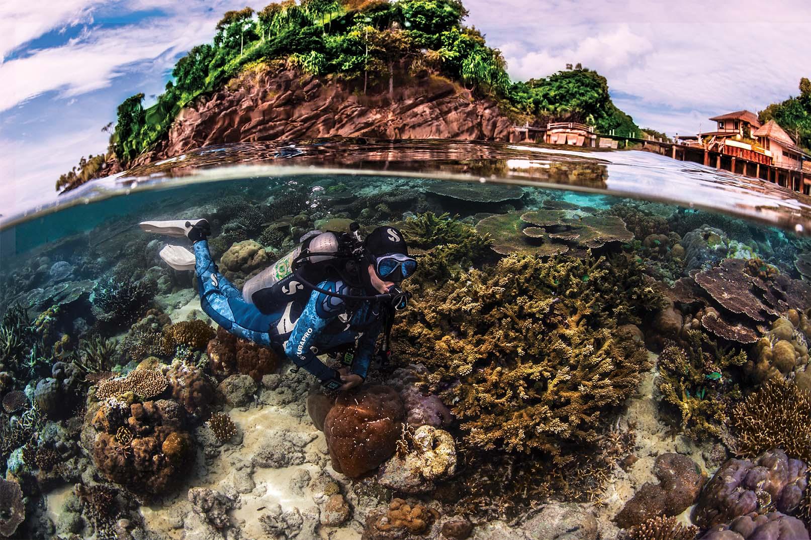 scubaboard tauchen, foto: scubapro