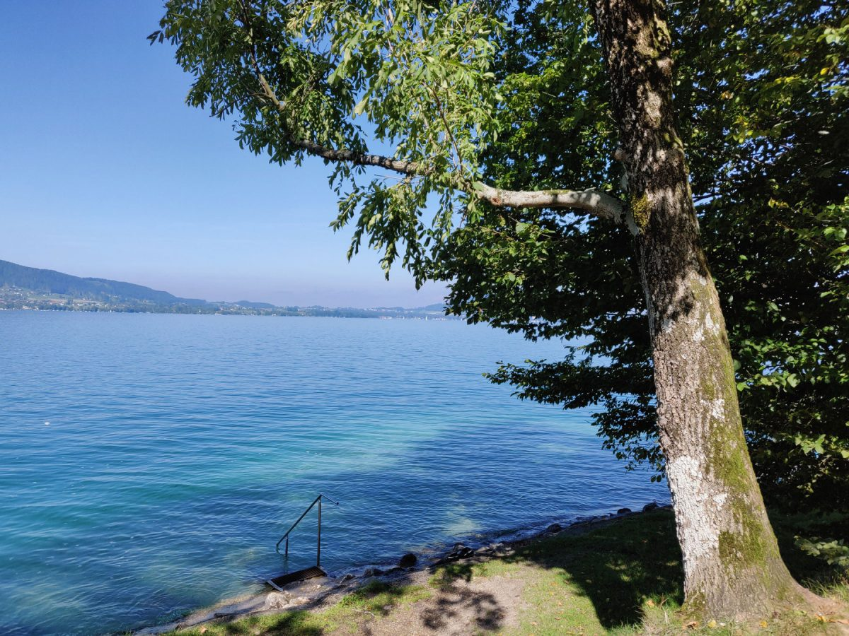 OWD Attersee Sept. 2019