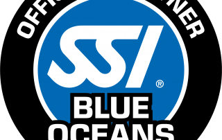 Blue Oceans Center